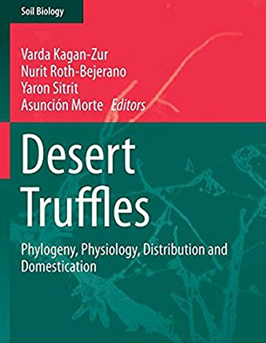 9783642400971: Desert Truffles: Phylogeny, Physiology, Distribution and Domestication