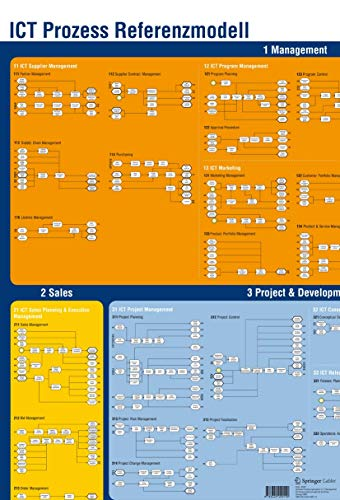 Prozessmodell einer IT-Unternehmung: Das Poster zum Buch: Karer, Albert