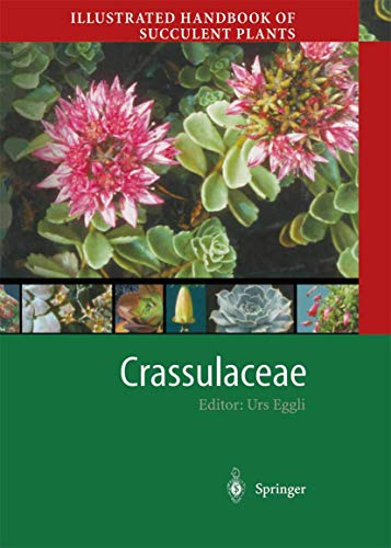 9783642626296: Illustrated Handbook of Succulent Plants: Crassulaceae