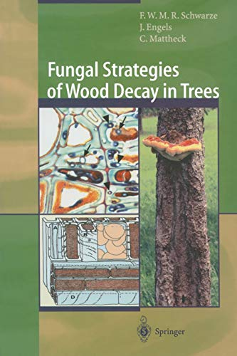 9783642631337: Fungal Strategies of Wood Decay in Trees