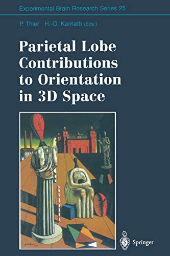 9783642644986: Parietal Lobe Contributions to Orientation in 3D Space (Experimental Brain Research Series)