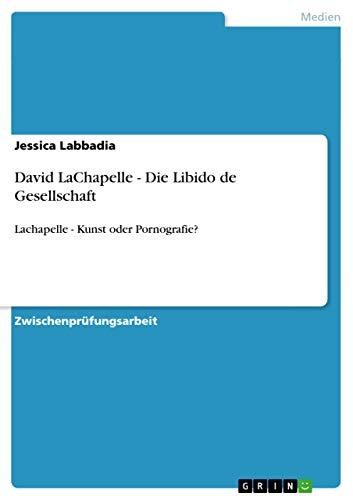 9783656078562: David LaChapelle - Die Libido de Gesellschaft
