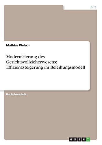 Modernisierung Des Gerichtsvollzieherwesens: Effizienzsteigerung Im Beleihungsmodell: Mathias ...