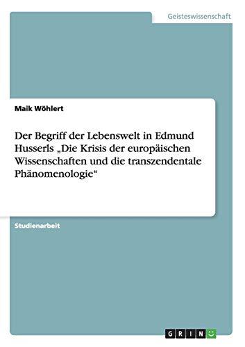 9783656285984: Der Begriff der Lebenswelt in Edmund Husserls