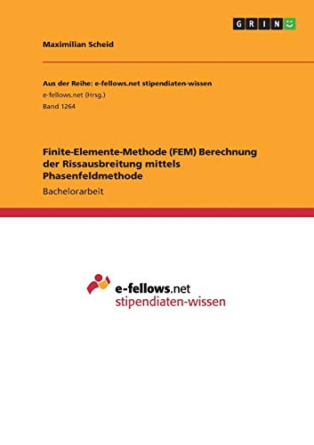 Finite-Elemente-Methode (FEM) Berechnung der Rissausbreitung mittels Phasenfeldmethode: Maximilian ...