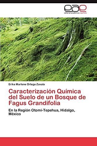 9783659015458: Caracterizacion Quimica del Suelo de Un Bosque de Fagus Grandifolia