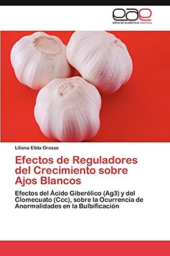 Efectos de Reguladores del Crecimiento sobre Ajos Blancos: Efectos del Ácido Giberé...