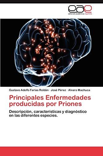 9783659026362: Principales Enfermedades Producidas Por Priones
