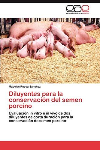 9783659028847: Diluyentes para la conservación del semen porcino: Evaluación in vitro e in vivo de dos diluyentes de corta duración para la conservación de semen porcino (Spanish Edition)
