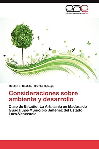 9783659041310: Consideraciones Sobre Ambiente y Desarrollo