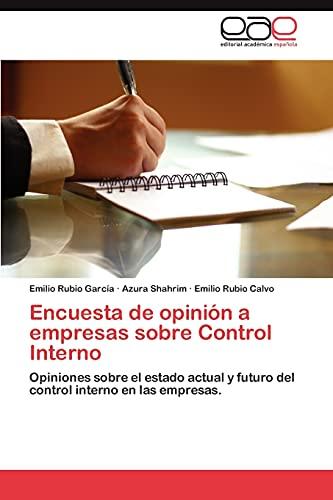 9783659042041: Encuesta de opinión a empresas sobre Control Interno: Opiniones sobre el estado actual y futuro del control interno en las empresas. (Spanish Edition)