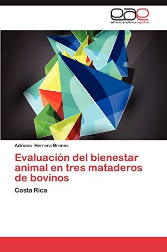 9783659043482: Evaluacion del Bienestar Animal En Tres Mataderos de Bovinos
