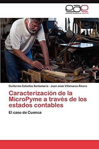 9783659050282: Caracterización de la MicroPyme a través de los estados contables: El caso de Cuenca (Spanish Edition)