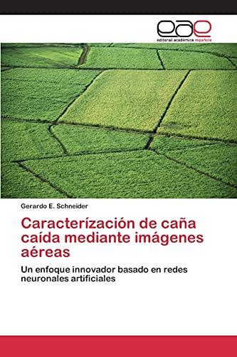 9783659083136: Caracterízación de caña caída mediante imágenes aéreas (Spanish Edition)