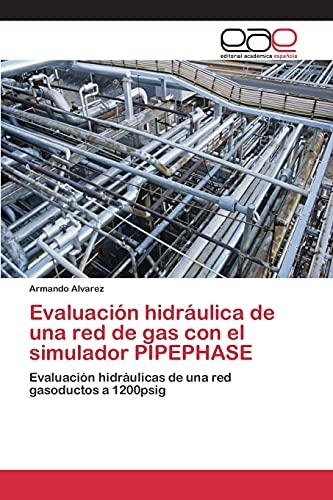 9783659098635: Evaluación hidráulica de una red de gas con el simulador PIPEPHASE: Evaluación hidráulicas de una red gasoductos a 1200psig (Spanish Edition)