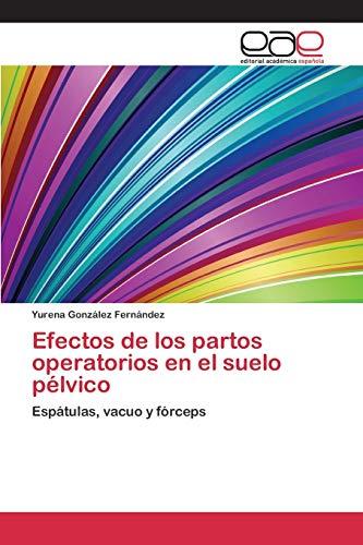 9783659101427: Efectos de los partos operatorios en el suelo pélvico: Espátulas, vacuo y fórceps (Spanish Edition)