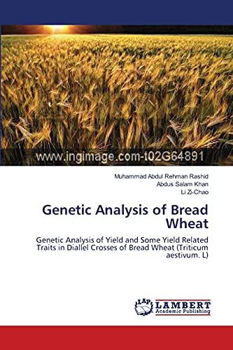 Genetic Analysis of Bread Wheat: Rashid, Muhammad Abdul