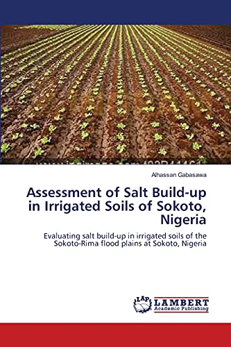 9783659147173: Assessment of Salt Build-up in Irrigated Soils of Sokoto, Nigeria: Evaluating salt build-up in irrigated soils of the Sokoto-Rima flood plains at Sokoto, Nigeria