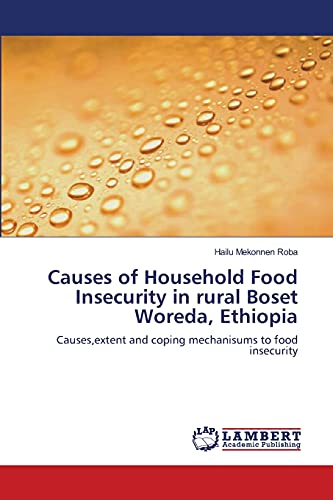 9783659201257: Causes of Household Food Insecurity in rural Boset Woreda, Ethiopia: Causes,extent and coping mechanisums to food insecurity