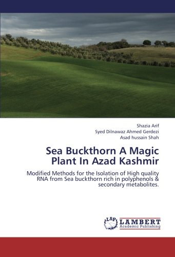 9783659271830: Sea Buckthorn A Magic Plant In Azad Kashmir: Modified Methods for the Isolation of High quality RNA from Sea buckthorn rich in polyphenols & secondary metabolites.