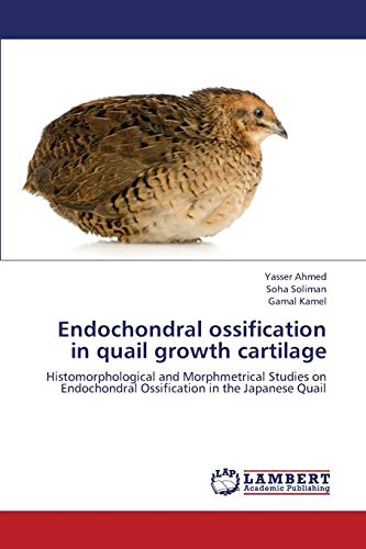 Endochondral ossification in quail growth cartilage: Histomorphological and Morphmetrical Studies ...