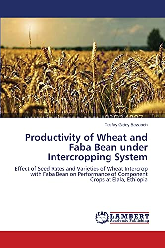 Productivity of Wheat and Faba Bean Under Intercropping System: Tesfay Gidey Bezabeh
