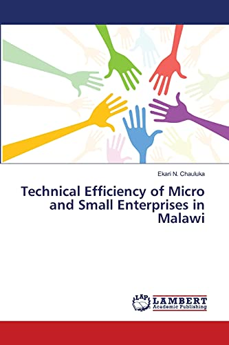 9783659403569: Technical Efficiency Of Micro And Small Enterprises In Malawi