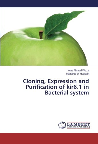 Cloning, Expression and Purification of kir6.1 in Bacterial system (Paperback): Ajaz Ahmad Waza, ...