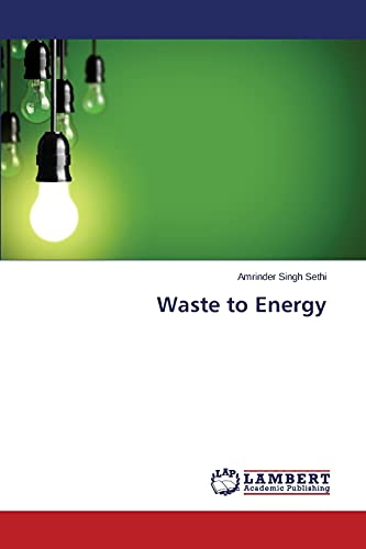 9783659506161: Waste to Energy