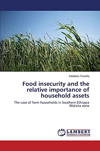 Food insecurity and the relative importance of: Kebebew Fisseha