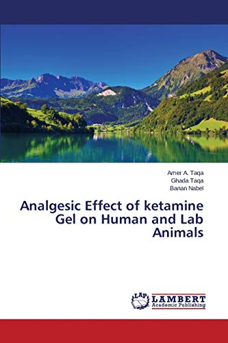 9783659636677: Analgesic Effect of ketamine Gel on Human and Lab Animals