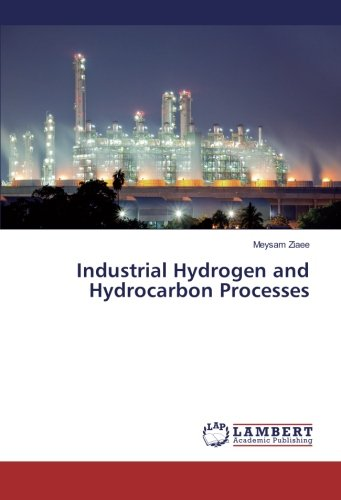 Industrial Hydrogen and Hydrocarbon Processes (Paperback): Meysam Ziaee