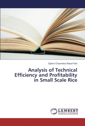 9783659933363: Analysis of Technical Efficiency and Profitability in Small Scale Rice