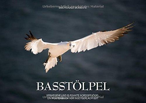 9783660061000: Emotionale Momente: Basstölpel (Posterbuch DIN A3 quer): Anmutig, pfeilschnell und elegant - die Basstölpel auf Helgoland. (Posterbuch, 14 Seiten)