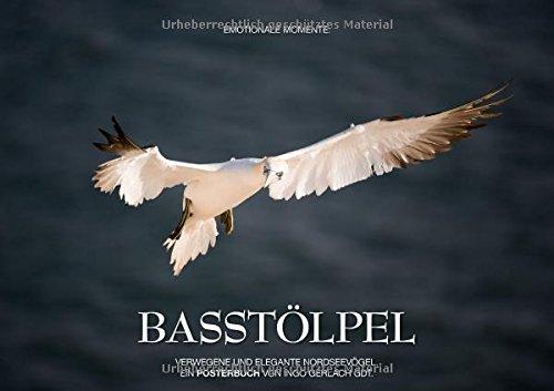 9783660061017: Emotionale Momente: Basstölpel (Posterbuch DIN A2 quer): Anmutig, pfeilschnell und elegant - die Basstölpel auf Helgoland. (Posterbuch, 14 Seiten)