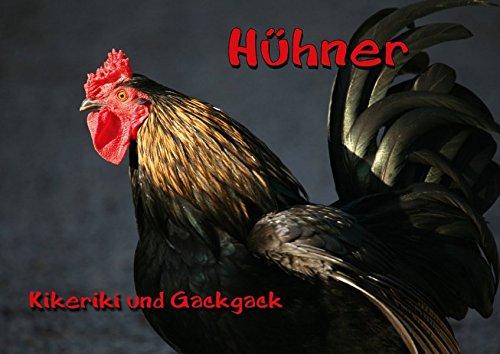 9783660065534: Hühner (Posterbuch DIN A4 quer): Kikeriki und Gackgack (Posterbuch, 14 Seiten)
