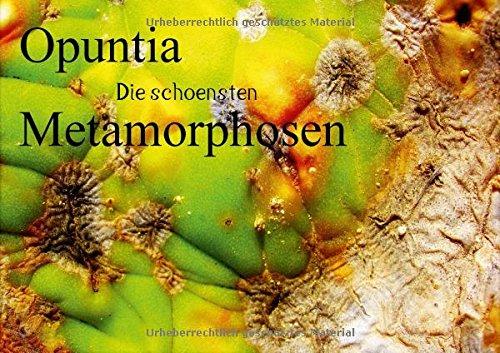 9783660072600: Opuntia die schoensten Metamorphosen (Posterbuch DIN A4 quer): So schön kann Sterben sein! Metamorphosen von Opuntien,im spanischen Hitzesommer 2012. ... Natur der Kuenstler! (Posterbuch, 14 Seiten)
