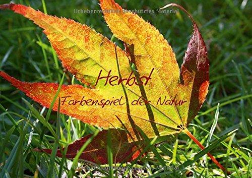 9783660078633: Herbst - Farbenspiel der Natur (Posterbuch DIN A3 quer): Naturaufnahmen im Herbst (Posterbuch, 14 Seiten)