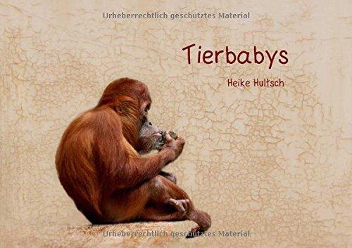 9783660078923: Tierbabys (Posterbuch DIN A4 quer): Süße Tierbabys (Posterbuch, 14 Seiten)