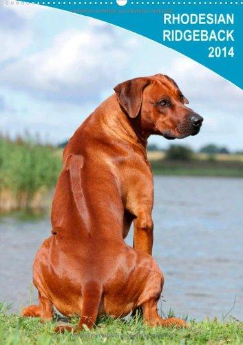9783660095494: Rhodesian Ridgeback 2014 (Wandkalender 2014 DIN A4 hoch): Wandkalender 2014 (Monatskalender, 14 Seiten)