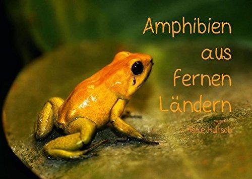 9783660114928: Amphibien aus fernen Ländern (Posterbuch DIN A3 quer): Frösche und Kröten (Posterbuch, 14 Seiten)