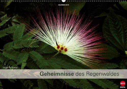 9783660131000: Geheimnisse des Regenwaldes - Author: Digital - KV&H Verlag GmbH Heye