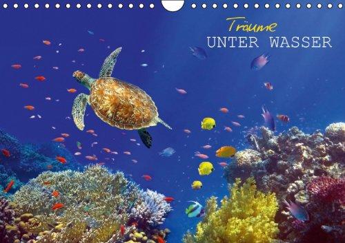 9783660184297: Träume unter Wasser (Wandkalender 2014 DIN A4 quer): Eindrücke aus der Unterwasserwelt (Monatskalender, 14 Seiten)