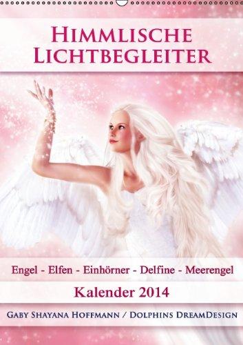 9783660206371: Himmlische Lichtbegleiter Kalender W