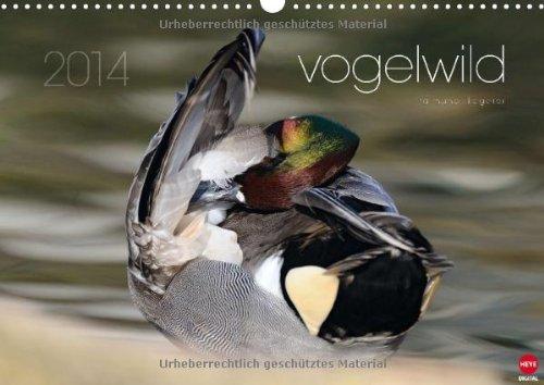 9783660223309: vogelwild (Wandkalender 2014 DIN A3 quer): Einzigartiger Blick auf unsere Vogelwelt (Monatskalender, 14 Seiten)