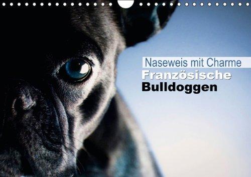 9783660258035: Naseweis mit Charme - Französische Bulldoggen (Wandkalender 2014 DIN A4 quer): Ein Hund voller Ausstrahlungskraft und viel Charakter (Monatskalender, 14 Seiten)