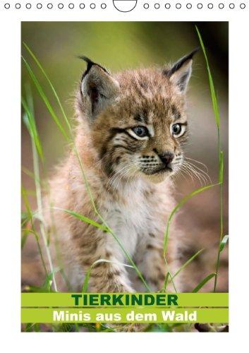9783660259896: Tierkinder - Minis aus dem Wald (Wandkalender 2014 DIN A4 hoch): Jede Reise beginnt mit dem ersten Schritt (Monatskalender, 14 Seiten)