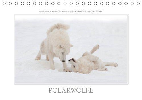 9783660276725: Emotionale Momente Polarwã¶lfe. Tisch