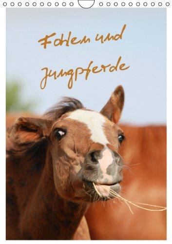 9783660289497: Fohlen und Jungpferde (Wandkalender 2014 DIN A4 hoch): Familienplaner mit lustigen Fohlenfotos (Monatskalender, 14 Seiten)