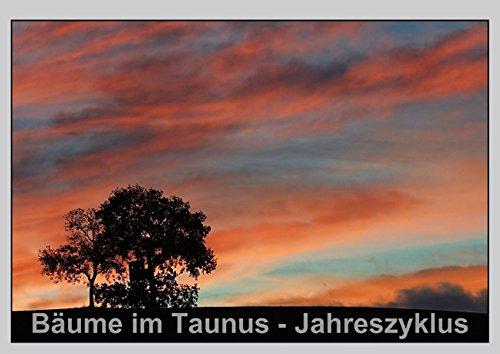 9783660290424: Bäume im Taunus - Jahreszyklus - Posterbuch